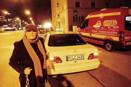 Taxifahrerin rettet schwer verletzte Katze