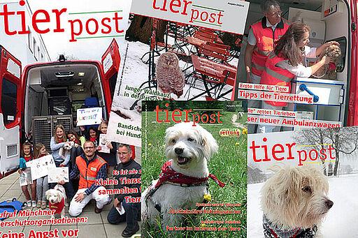 Die tierpost ist das Mitgliederjournal der aktion tier Tierrettung München e.V.